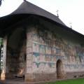 manastirea-arbore-plan-lateral